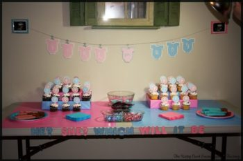Gender Reveal Continued