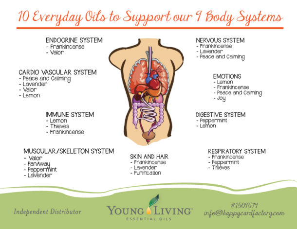 10-Everyday-Oils-for-9-Body-Systems